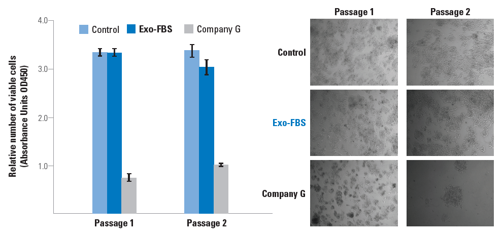 Exo-FBS supports more robust cell growth than competitors