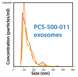 All purified exosomes are characterized using NanoSight.