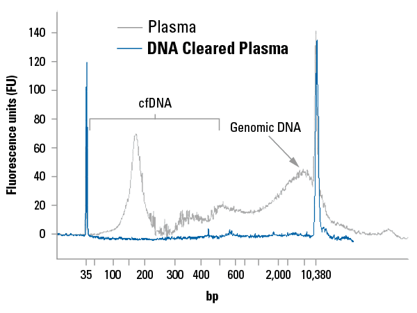 DNA Cleared Plasma is free of detectable cfDNA and carried-over genomic DNA.