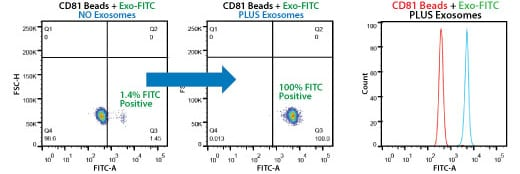 Highly selective exosome isolation by FACS using anti-CD81