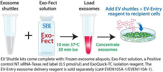 The EV Shuttle Kit enables direct transfection of RNA, plasmid, and small molecule cargo into exosomes