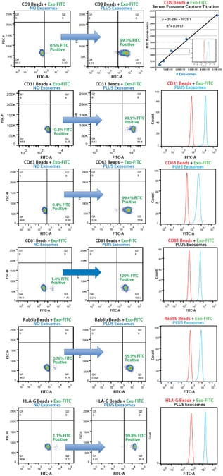 Highly selective exosome isolation by FACS