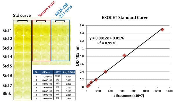 Sample data and standard curve for EXOCET.