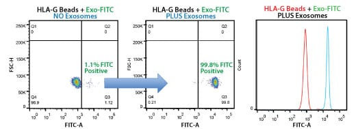 Highly selective exosome isolation by FACS using anti-HLA-G