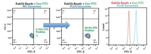 Highly selective exosome isolation by FACS using anti-Rab5b