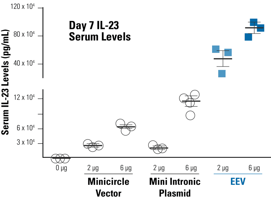 A constitutive EEV reporter based on CAGs-MCS leads to higher serum IL-23 levels in mice than two other episomal vector systems