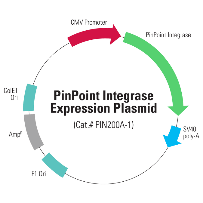 PinPoint Integrase Expression Plasmid