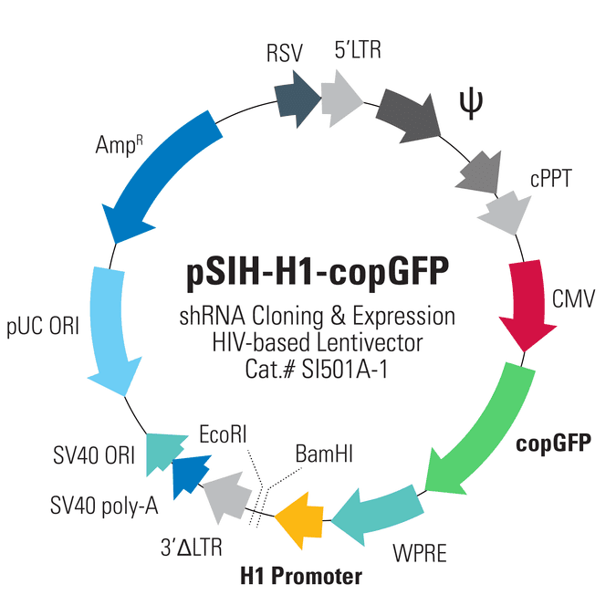 pSIH1-H1-copGFP Cloning and Expression Lentivector