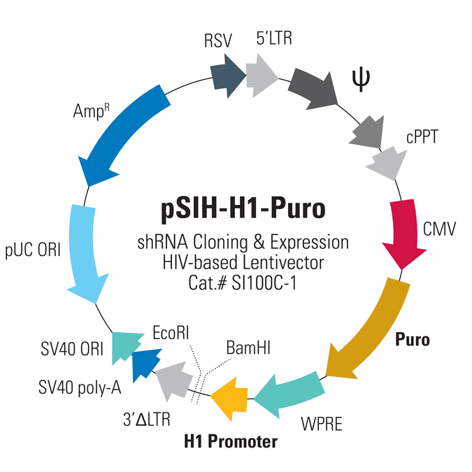 pSIH1-H1-Puro Cloning and Expression Lentivector