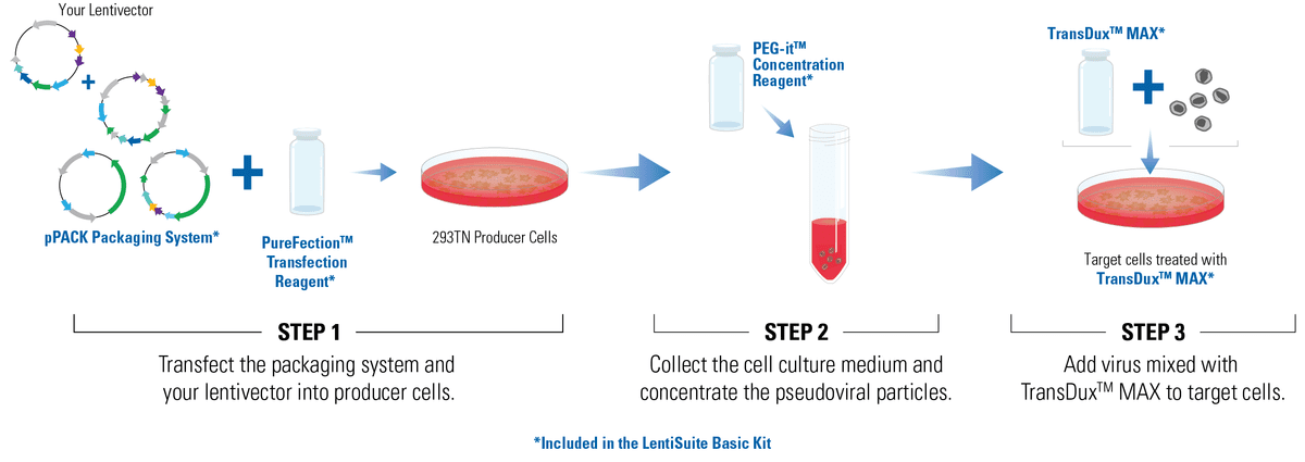 The LentiSuite Basic Kit includes optimized reagents for large-scale lentivirus production when quantitative titer information is not needed