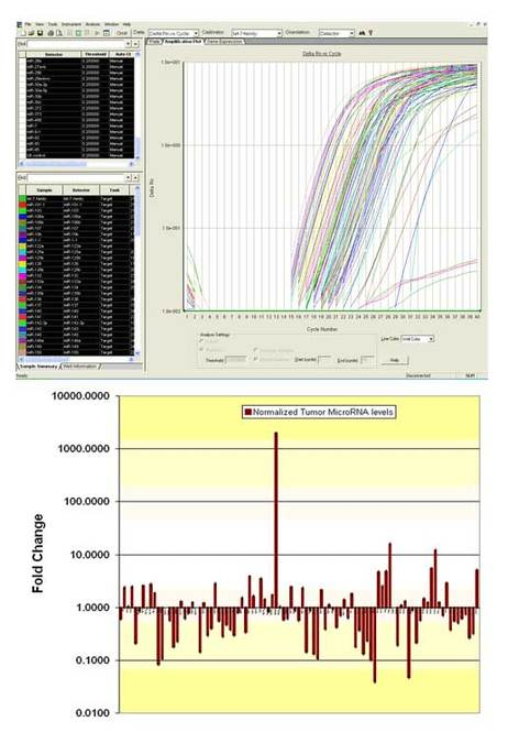 Example user-generated OncoMir qPCR Array Data